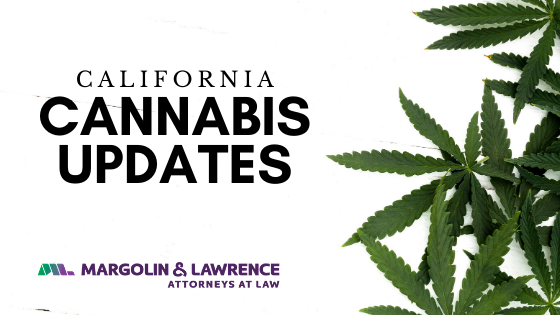 Cannabis Updates from Around the State: February 2020