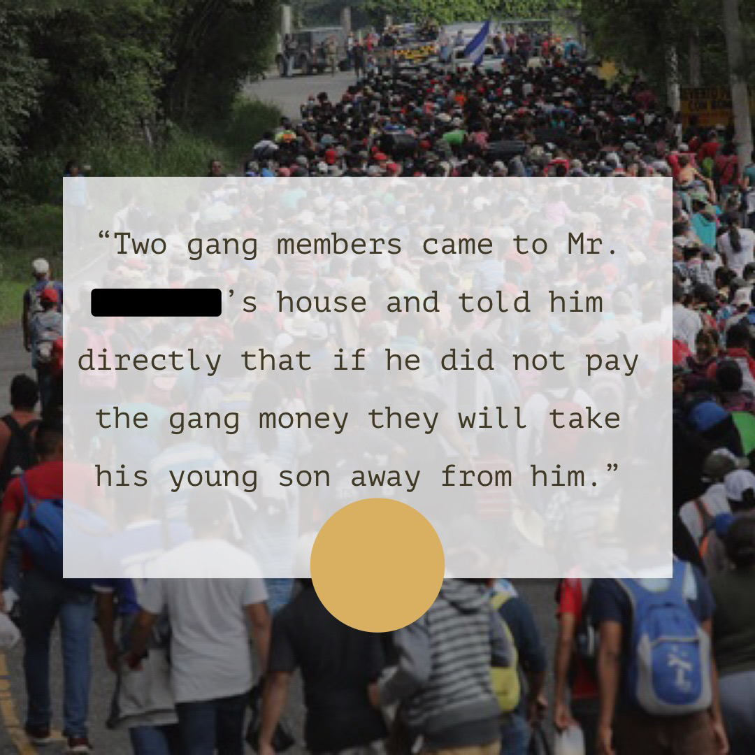 Asylum Seekers' Stories From the DHS