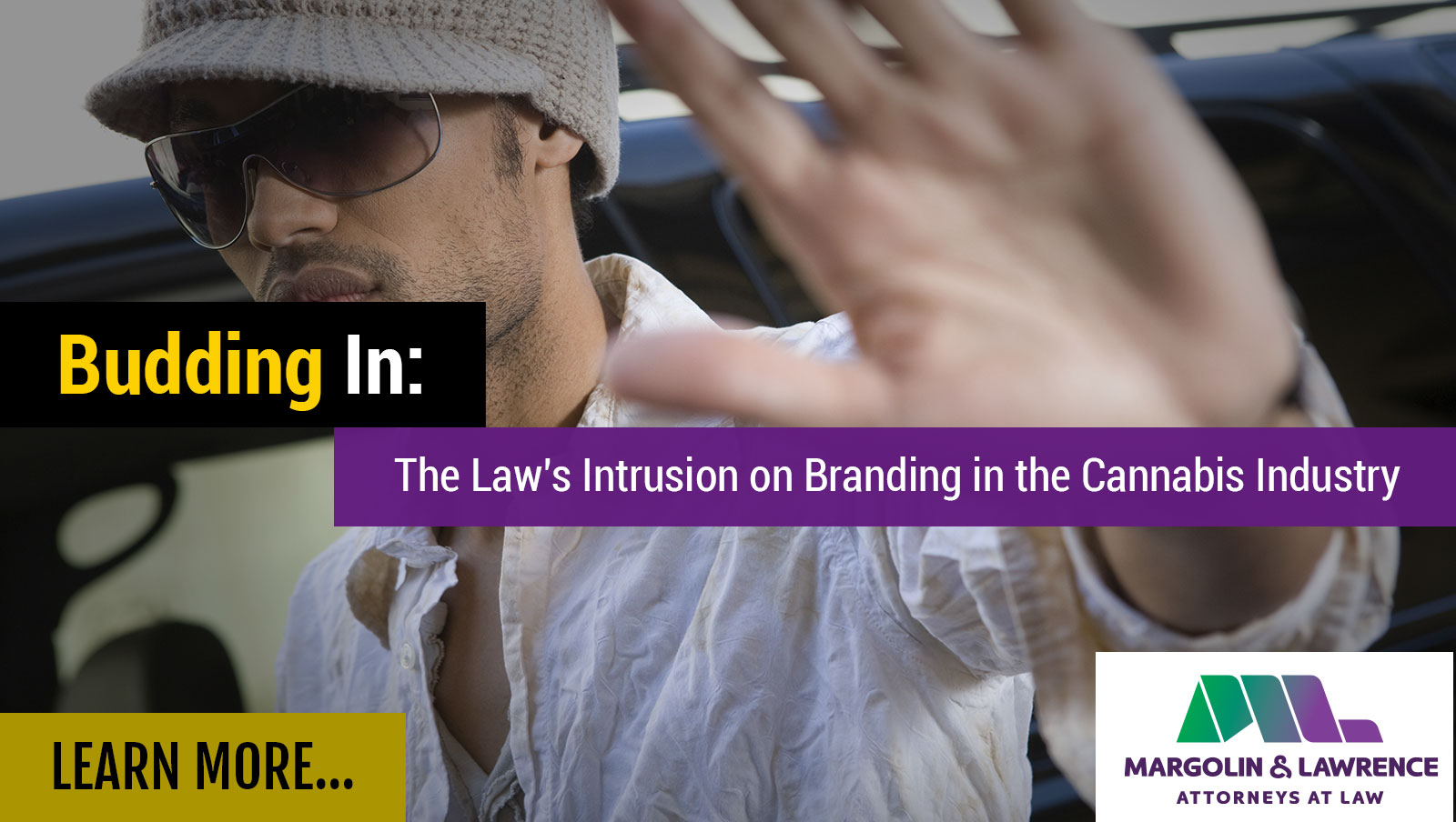 Budding In: The Law's Intrusion on Branding inthe Cannabis Industry