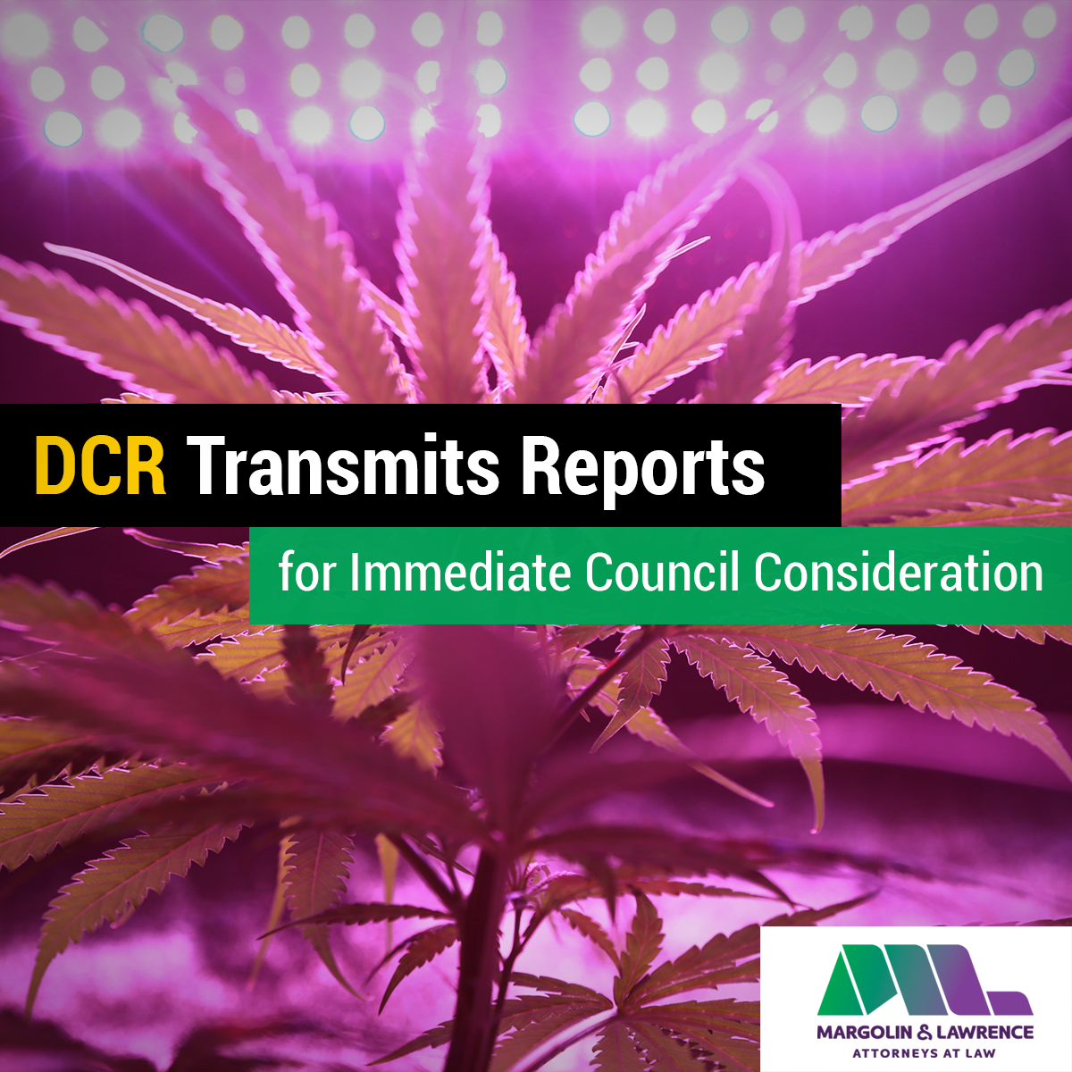 DCR Transmits Reports for Immediate Council Consideration
