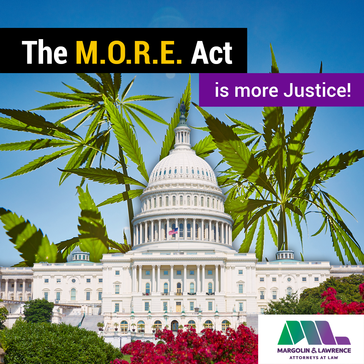 The MORE Act is More Justice!