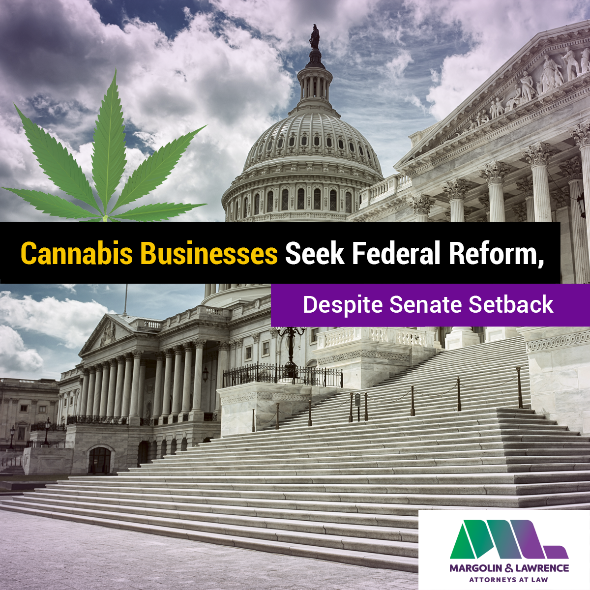 Cannabis Businesses Seek Federal Reform, Despite Senate Setback