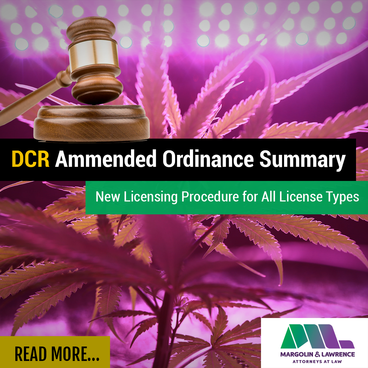 DCR Amended Ordinance Summary - July 1, 2020 City Council Meeting